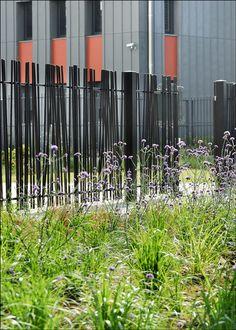 asnieres_residential_park_by_Espace_Libre_landscape_architecture_17