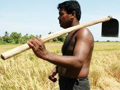 "SRI LANKA: Water conservation ""desperately"" needed"