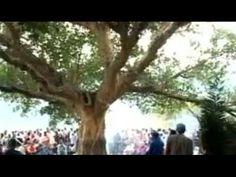 [Amharic] Documentary about Irreecha | Oromo Thanksgiving (Bishoftu, Oro...