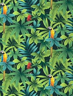 Tropical - Rainforest - Birds - Parrots - Macaw - Wallpaper so cute, but too many colors.Tropical birds have a lot of colors on their own Art Tropical, Motif Tropical, Tropical Pattern, Tropical Birds, Parrot Wallpaper, Tropical Wallpaper, Wallpaper Jungle, Rainforest Birds, Colorful Parrots