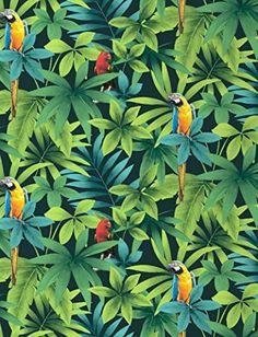 Direct Forêt Jungle Motif oiseau chanteur perroquet J86404 Papier peint Motif feuilles: Amazon.fr: Bricolage