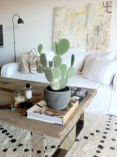 Ibland är det enkla det vackraste. Låt den gröna växten sätta stilen i rummet.