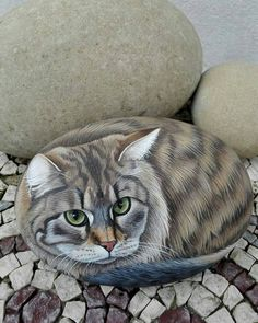 32 Interesting Diy Painted Rocks Animals Cats For Summer Ideas. If you are looking for Diy Painted Rocks Animals Cats For Summer Ideas, You come to the right place. Below are the Diy Painted Rocks An. Stone Art Painting, Pebble Painting, Pebble Art, Diy Painting, Rock Painting Patterns, Rock Painting Ideas Easy, Rock Painting Designs, Painted Rock Animals, Hand Painted Rocks