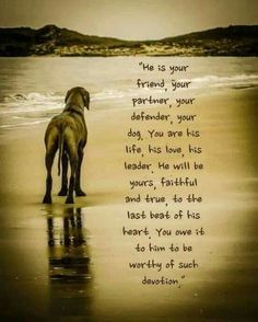 Rhodesian Ridgeback Greeting Card for Ridgeback Rescue Charity I Love Dogs, Puppy Love, Cute Dogs, Rhodesian Ridgeback, Weimaraner, Pet Loss Grief, Dog Poems, Dog Quotes Love, Funny Quotes