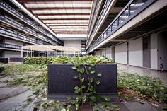 Saarinen's Bell Labs, Holmdel, New Jersey; abandoned after a flood