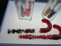 Candy Cane Sensory Tubes: Sense of Sight.  Fun for a Christmas 5 senses science activity