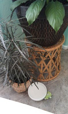 Thrifted Baskets by NYCLQ, via Flickr