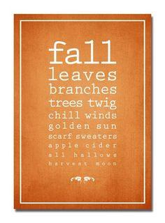 Falling for fall...