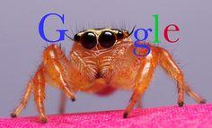 A new webcrawler   ;-)