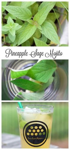 Pineapple Sage Mojito - Grow your own herbs and then use them in amazing summer cocktails! Refreshing Cocktails, Summer Cocktails, Cocktail Drinks, Fun Drinks, Cocktail Recipes, Beverages, Party Drinks, Drink Recipes, Brunch Drinks