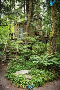 TreeHouse Point 6922 Preston-Fall City Road Southeast, 98027, Issaquah, WA, United States, North America / The Green Life <3<br>