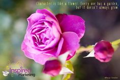 Character is like a flower! I created this from a picture I took of a rose; thought the saying fit :) Marketing, Inspired, Create, Rose, Fit, Garden, Flowers, Plants, Pictures