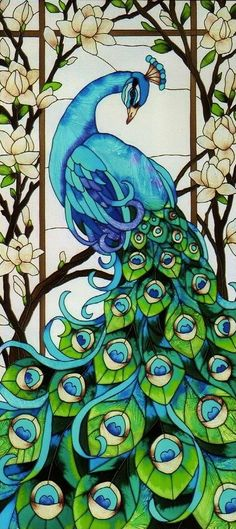 peacock window