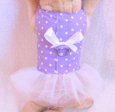 XS Dog Clothes PURPLE WHITE TUTU Outfit Harness Dress Girl Female THE WHITE PEACOCK