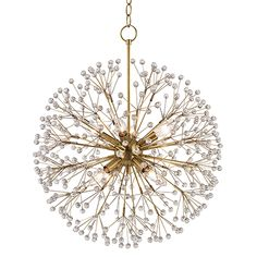 Hudson Valley Lighting - Dunkirk Chandelier - 6020-AGB - Aged Brass - MUST USE THIS!  LOVE!!!!