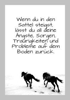 zwei laufende, schwarze, wilde pferde mit langen, dichten, schwarzen mähnen und schwarzen hufen, schöne pferdebilder und schöne pferdesprüche