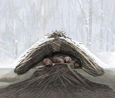 Beaver Lodge, Anthropology, Toms, Nature, Naturaleza, Anthropologie, Nature Illustration, Off Grid