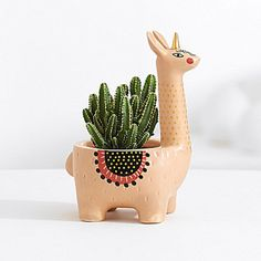 cactus plant If you love fun yet stylish decor, this llamacorn planter is your spirit animal. Its back is packed full of a lovely little Cereus tetragona cactus plant, commonly known as the Fairy Castle cactus, to deliver delight wherever its placed. Cactus Decor, Plant Decor, Cactus Flower, Flower Pots, Cactus Cactus, Indoor Cactus, Flower Bookey, Flower Film, Cactus Terrarium