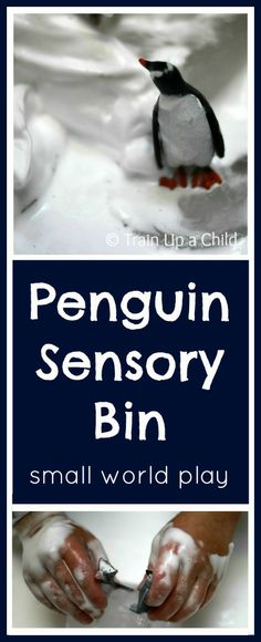 Penguin Sensory Bin {Small World Play} Bring Antarctica to life and explore the world of Emperor penguins with this simple to create sensory bin.  Fun and educational for toddlers and up!