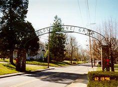 YE OLDE TOWNE GATE