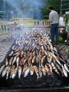 Sardines, typical at S. João festivities in Porto - night of 23 of June. Sardine Recipes, Fish Recipes, Seafood Recipes, Grilled Sardines, Portuguese Recipes, Portuguese Food, Learn Brazilian Portuguese, How To Become Vegan, The Beautiful Country