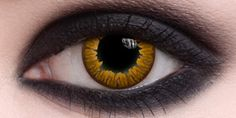 Vampire gold contacts