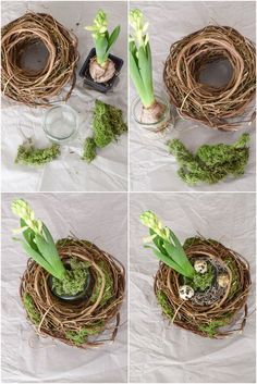Frühlingsnest mit Hyazinthe DIY spring decoration: spring nest with hyacinth, moss and quail eggs, d Diy Spring, Spring Crafts, Colchas Quilt, Diy 2019, Quail Eggs, Deco Floral, Diy Décoration, Egg Decorating, Easter Crafts