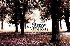 freedom+quotes | Freedom Graphic - Photo Quotes Graphics
