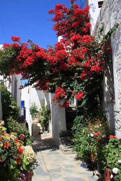 Falatados, Tinos, Greece