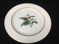 "Vintage Imperial Craftsman Japan Porcelain China Begonia Plate, 7 7/8"" Diameter #ImperialCraftsman"