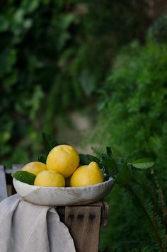 ** Lemon Fruits Photos, Easy Canvas Art, Yellow Cottage, Themes Photo, Body Is A Temple, Photo Tree, Limoncello, Lemon Lime, Still Life