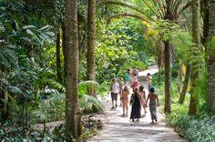 Inhotim- O Instituto Inhotim é a sede de um dos mais importantes acervos de arte contemporânea do Brasil e considerado o maior centro de arte ao ar livre da América Latina2 . Está localizado em Brumadinho (Minas Gerais), uma cidade com 30 mil habitantes, a apenas 60 km de Belo Horizonte.