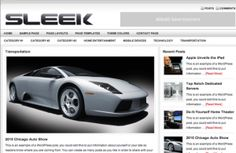 http://www.themesfinder.com/demo/666/Stella-Responsive-WordPress-Portfolio-Theme/demo