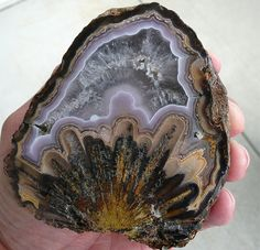 This agate has just been cut. Amazing Coyamito agate(Frozen Explosion) from Northern Mexico. credit: agatehill Visit Amazing Geologist For more. Minerals And Gemstones, Rocks And Minerals, Beautiful Rocks, Mineral Stone, Rocks And Gems, Stones And Crystals, Gem Stones, Gemstone Colors, Agates