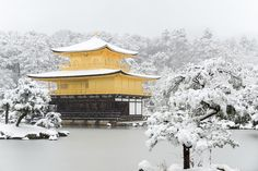 https://flic.kr/p/pEgJcs | 雪の金閣寺舎利殿 / Kinkaku-ji Temple in Winter | 【RECORD Active-U - 2011 January】 ・雪の鹿苑寺 金閣