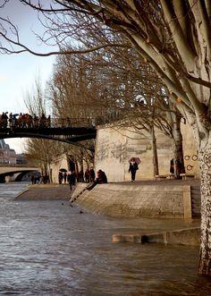 Banks of the Seine, Paris