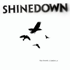 The Sound Of Madness Shinedown | Format: MP3 Download, http://www.amazon.com/dp/B001AXME2S/ref=cm_sw_r_pi_dp_S3z6pb1DN5TWB