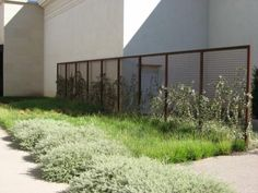 Western Fence Company rusted metal look, steel grid fence