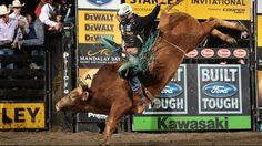 Professional Bull Riders - Gay wins 15/15 Bucking Battle; Stewart, Tsosie split Round 1
