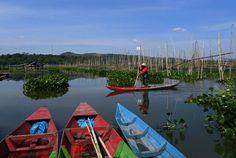 Swamp fishing reel