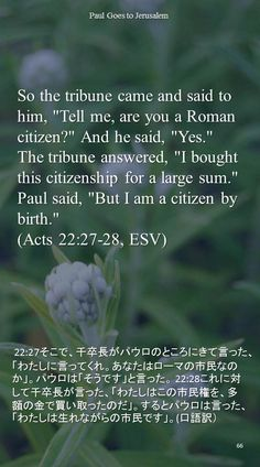 "So the tribune came and said to him, ""Tell me, are you a Roman citizen?"" And he said, ""Yes.""The tribune answered, ""I bought this citizenship for a large sum."" Paul said, ""But I am a citizen by birth.""(Acts 22:27-28, ESV) 22:27そこで、千卒長がパウロのところにきて言った、「わたしに言ってくれ。あなたはローマの市民なのか」。パウロは「そうです」と言った。 22:28これに対して千卒長が言った、「わたしはこの市民権を、多額の金で買い取ったのだ」。するとパウロは言った、「わたしは生れながらの市民です」。(口語訳)"
