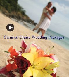Carnival Cruise Wedding Packages, Prices, Extras and Locations.  Contact Mitch Certified Wedding and Honeymoon Specialist at Island Cruises & Travel to help put together the Wedding and Honeymoon of your dreams for you and your family .     847-885-7540 - Free Family Private Web Site