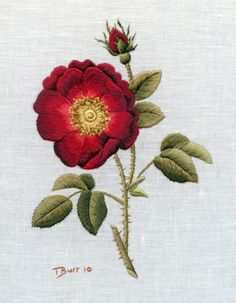 Needle Painting with Thread-French Rose by Trish Burr