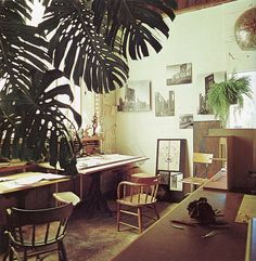 tropical plants in the room. Looks cool! Interior Architecture, Interior And Exterior, Interior Design, Workspace Inspiration, Interior Inspiration, Interior Ideas, Big Indoor Plants, Indoor Garden, 70s Decor
