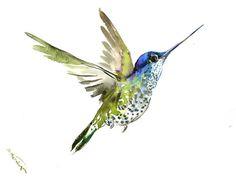 Arc en ciel Colibri, 12 x 9, celui d'un art de type oiseau tropical, paradis