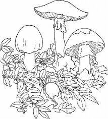 trippy coloring pages google search
