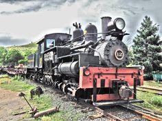 Shay Locomotive No. 12 by Tronlegacy22