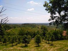Plešivica hill near jastrebarsko