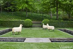 Little Flock - sheep are whimsical but what caught my eye is the lovely manicured lawns.