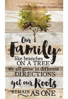 family sentiment on shaded background with tree motif. 'Our family like branches on a tree..we all grow in different directions yet our roots remain as one'